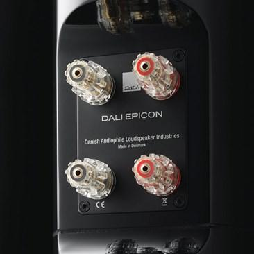 DALI-EPICON-8-terminal-02.jpg